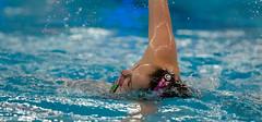 O5103214 (roel.ubels) Tags: swimming european ek alexander championships willem hoofddorp synchronised ec synchro synchronized zwemmen 2015 sincro synchroon synchroonzwemmen leneuropeansynchronisedswimmingchampionscuphaarlemmermeer2015 europeanchampionscup2015