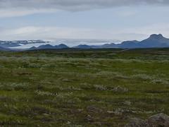 P1870426 Gullfoss waterfall  (15) (archaeologist_d) Tags: