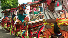Menunggu Rezeki (detania) Tags: indonesia travel nature westsumatra sumaterabarat human interest delman bukittinggi jamgadang horse labor sumatra sumatera culture holiday vacation bendi horsecart cart traditional tradition