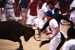 PlazaDeToros (Gotas de Ans) Tags: plaza de toros antitaurino taurino vaquillas espaa tradicion san fermin fermines cuernos irua pamplona navarra pais vasco spain torero