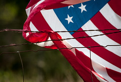freedom fenced (KClarkPhotography) Tags: fence stars freedom wire flag american patriotism barbed stipes