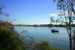 01DI7622 (Lox Pix) Tags: loxpix queensland australia architecture boat brisbane bird building bridge river rivercat catamaran cityscape smoke clouds tug flowers ferry yacht trawler loxwerx l0xpix