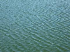 Wellenmuster (Jrg Paul Kaspari) Tags: meerfeld meerfeldermaar eifel vulkaneifel sommer summer august 2016 wind wellen wasser water wasseroberflche textur texture muster pattern