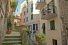 2016-07-04 at 11-59-54 (andreyshagin) Tags: riomaggiore cinque trip travel town tradition terre architecture andrey shagin summer nikon d750 daylight