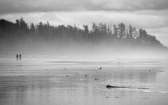 Tofino, Canada (james.mason01) Tags: tofino beach vancouver island blackandwhite isolation water