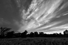 Previous Sunset, BW (thefisch1) Tags: monochrome black white photo kansas sunset sky horizon contrast oogle prairie nikon nikkor interesting pattern cirrus cloud wispy