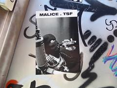 malice (Rkt-nxr) Tags: malice