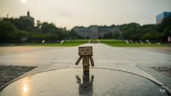 DSC08114 (brooke716@kimo.com) Tags:    danboard danbo  yotsubato toy  toytravel