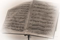 violino (Nederland in foto's) Tags: paulvandevelde pdvandevelde padagudaloma nikon nederlandinfotos nederland netherlands dordrecht viool vioolmuziek muziekboek violine bladmuziek vignette noten notenbalk