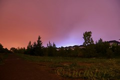 Northern Lights (AncasterZ) Tags: aurora southernlight northernlight sal1650 longexposure