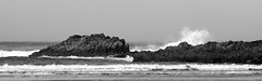 Indian Beach Splash BW