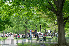 Oberlin College Commencement 2015 (Edsel L) Tags: ohio college lady zeiss t us unitedstates michelle first mm fe za obama f4 oberlin oss 2470 oberlincollege flotus variotessar a7r firstladymichelleobama obiecrw ilce7r zeissvariotessartfe2470mmf4zaoss oberlincrw