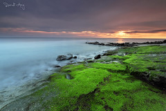 Mossy (Randi Ang) Tags: kaprusan senggigi lombok indonesia landscape seascape sunset long exposure photography randi ang fuji fujifilm xt10