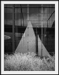 sailing the forest (Andrew C Wallace) Tags: ir infrared sailing boat fish trees museumvictoria carlton melbourne victoria australia blackandwhite bw olympusomdem5