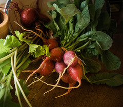 Radishes and Beets (lclower19) Tags: radish vegetable beet green plant