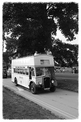 IMGP3889 (Steve Guess) Tags: park uk england bus k vintage bristol coach brighton open top hove hampshire historic southern vectis topless gb alton topper anstey watercressline hants midhants
