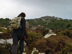 Following the fresh dots and new cairns back to Erifi plateau (1) (angeloska) Tags: ikaria hikingtrails opsikarias aegean greece signage    ryakas geli   winter weather girl hiker erifi  oakforest cairn