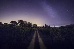 night road (klepher) Tags: light sky mountain france tree night dark stars landscape south country iso vignoble nuit etoile vigne sud franch milkyway castellet