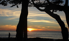 Cambria Christmas Eve evening (Chuck Gerber) Tags: sunset elements cambria