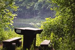 Perfect green place (salaminijo) Tags: wood light green nature canon bench eos three place serbia ser priroda 50mm18 mesto jezero uma grza savreno lakegrza