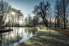A cold and crisp Morning (taperoo2k) Tags: christchurchmeadow frost mist cold crisp jubileebridge winter oxford kevintaphousephotography