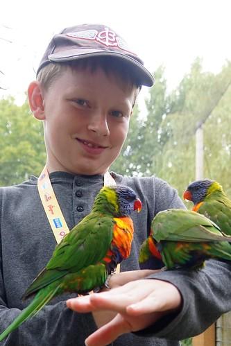 Chessington World of Adventures Resort 2016