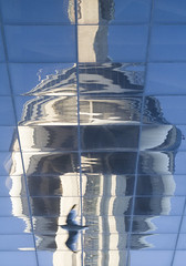 CN Tower, inverted reflection (jer1961) Tags: toronto cntower reflection distortion cntowerreflection torontoconventioncentre seagull inverted invertedphotograph