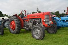 BIGGAR VINTAGE RALLY 2016 (RON1EEY) Tags: biggarvintagerally2016 tractor masseyferguson vintage classic