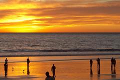 venice gold (sjg310) Tags: sunset clouds landscape nature la losangeles california venice beach reflection sky silhouette