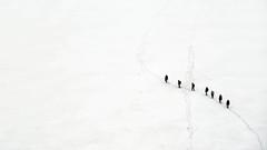 Cordata - Kesselwandferner - Tirol - Austria (Felina Photography, back in NL) Tags: felinafoto felinaphotography felina photographer photography fotografia fotografie fotografo fotografa tourism turismo toerisme turismus tourismus hiking hike tour trip adventure hotspot excursion escursione excursions escursioni excursie tocht uitje ausflug gita poster wallpaper alps alpi alpen mountain montagna montagne landscape landschap paysage paesaggio nature natura natuur     austria sterreich oostenrijk tirol tyrol tztal nkbv c1 cursus course dutchalpineclub mountaineering alpinism