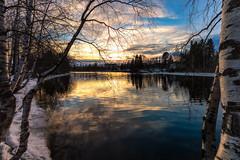 Iisalmi (Tuomo Lindfors) Tags: sunset sky snow reflection water suomi finland koivu birch lumi vesi auringonlasku heijastus taivas iisalmi dfine colorefexpro niksoftware viveza sharpenerpro theacademytreealley paloisvirta