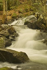 2015_0420Upper-Hiram-Brook0027 (maineman152 (Lou)) Tags: longexposure nature river landscape spring stream maine april brook flowing springwater naturephotography springbrook springrunoff landscapephotography flowingwater naturephoto longexposurephoto longexposurephotography landscapephoto hirambrook