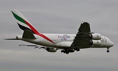 A6-EDF (stage1uk) Tags: emirates airbus a380861 a6edf heathroweos5dmkiii08052015 rugbyworldcupengland2015