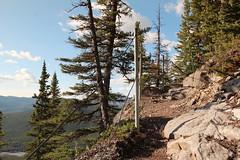 Nihahi ridge day hike Kananaskis may 31st 2015 (davebloggs007) Tags: kananaskis day may hike ridge 31st nihahi 2015