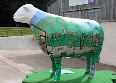 Sheep Shank (Cumberland Patriot) Tags: charity art public wall paint sheep outdoor farm painted go climbing trail cumbria trust keswick calvert shank ewe cumbrian herdwick herdy goosewell goherdwick