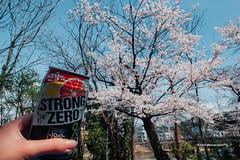 (usagi0915) Tags:     japanricoh grd travel  japanricoh        japan ricoh travel