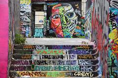 La biere qu'est ce qu'elle a fait de moi, la biere... (HBA_JIJO) Tags: urban streetart paris france art wall painting skull graffiti crane tag teeth spray peinture mur dents berns hbajijo