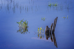 camas prairie-05-12-16-44 (Ken Folwell) Tags: reflections idaho camasprairie canon5dii