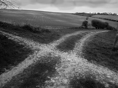 crossed path (orange-scribble) Tags: countryside landscape chalkpath cross southdowns fields