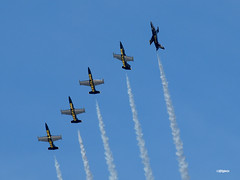160408_118_BreitlingJetTeam (AgentADQ) Tags: show sun plane airplane fun team czech aviation air jet n airshow albatros aero flyin l39 breitling 2016