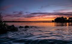 Into the water (marielledevalk) Tags: pink rose blue silhouette trees horizon beach sunset sun river water dutch landscape holland europe
