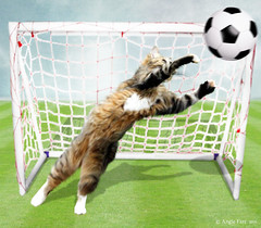 Great Save... (rubyblossom.) Tags: net grass cat ball football goal kitten shadows play post save catch wpc texturechallenge rubyblossom rubystreasures week506 therainbowworksjuly2016