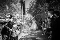 Arroz a paladas (MarcosGreiz) Tags: wedding weddingphoto weddings weddingphotographer bodas boda bodas2016 fotografosantander fotógrafo fotografobodas santander cantabria españa