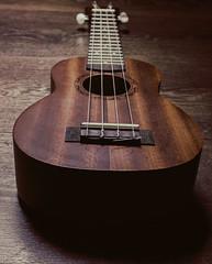 Ukulele (lewisAfernandez) Tags: light shadow photography photographer ukulele lewis musical anthony amateur fernandez amateurphotography lewisfernandez