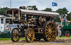 IMGL3949_Weeting Steam Engine Rally 2016 (GRAHAM CHRIMES) Tags: weeting weetingsteamenginerally2016 weetingsteamrally2016 weetingrally2016 2016 steamrally steamfair showground steamengine show traction transport tractionengine tractionenginerally heritage historic classic photography photos preservation wwwheritagephotoscouk countryshow steam vintage vehicle vehicles suffolk fowler b6 showmans roadlocomotive carryon 14425 1916 dp4418