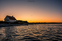 The House By The Sea (Explored) (Fredrik Lindedal) Tags: house sunset sweden sverige sky skyline sunlight water shadows bird orange blue summer evening harmony gotland ljugarn nikon sea seaside fredriklindedal onewithnature