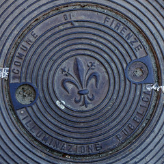 cover (Leo Reynolds) Tags: xleol30x squaredcircle panasonic lumix fz1000 cover fleurdelis sqset130