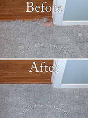 7 Carpet patch cat pet damage in bedroom Austin Round Rock Cedar Park Manor Bee Cave San Marcos (Carpet Repair) Tags: austincarpetrepair cedarparkcarpetrepair roundrockcarpetrepair pflugervillecarpetrepair sanmarcoscarpetrepair westlakehillscarpetrepair wimberleycarpetrepair suncitycarpetrepair driftwoodcarpetrepair georgetowncarpetrepair drippingspringscarpetrepair kylecarpetrepair laketraviscarpetrepair lakewaycarpetrepair leandercarpetrepair manorcarpetrepair onioncreekcarpetrepair bartoncreekcarpetrepair budacarpetrepair carpet repair austin kyle lakeway buda cedarpark roundrock sanmarcos beecave 10 carpetrepair repaircarpeting carpetrepaircost carpetrepairservice carpetrepaircompanies professionalcarpetrepair carpetdamagerepair carpetrepairspecialist repairingcarpetdamage cancarpetberepaired canyourepaircarpet carpetrepairaustintx fixingcarpet carpetfixing fixcarpet carpetpatching patchingcarpet carpetpatch patchcarpet carpetpatches patchacarpet carpetpatchingcost carpetpatchingservice carpetrepairpatch repaircarpets carpetpatchrepair canyoupatchcarpet repairingcarpetpatch patching patch patchwork snag tears tear torn fraying frayed unraveling hole dog cat