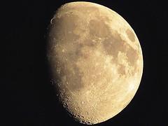 The moon (Alyssa Drabik) Tags: alyssadrabik follow like critique space galaxy nightphoto discover travel explore canont5i nightscape moon upclosemoon