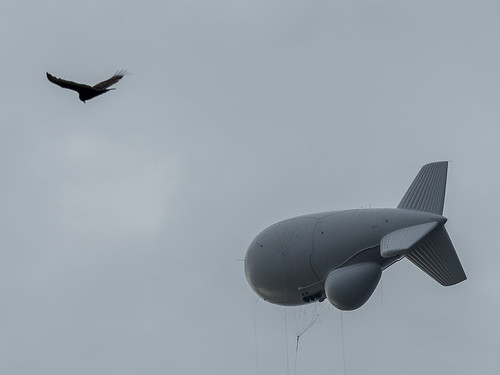 365: Day 121 - Tethered vs Free Flight by rclatter, on Flickr